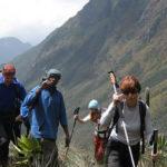 Hiking Rwenzori mountains