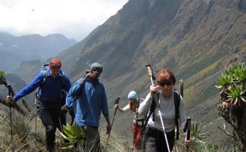 Hiking Rwenzori mountains