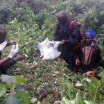 Virunga massif