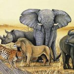 Uganda's big five game