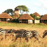 Kidepo-Valley-National-Park