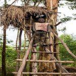 Batwa-high-nest
