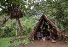 Batwa pygmies of Uganda