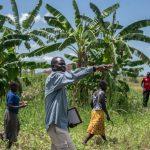 land-wrangles-in-uganda